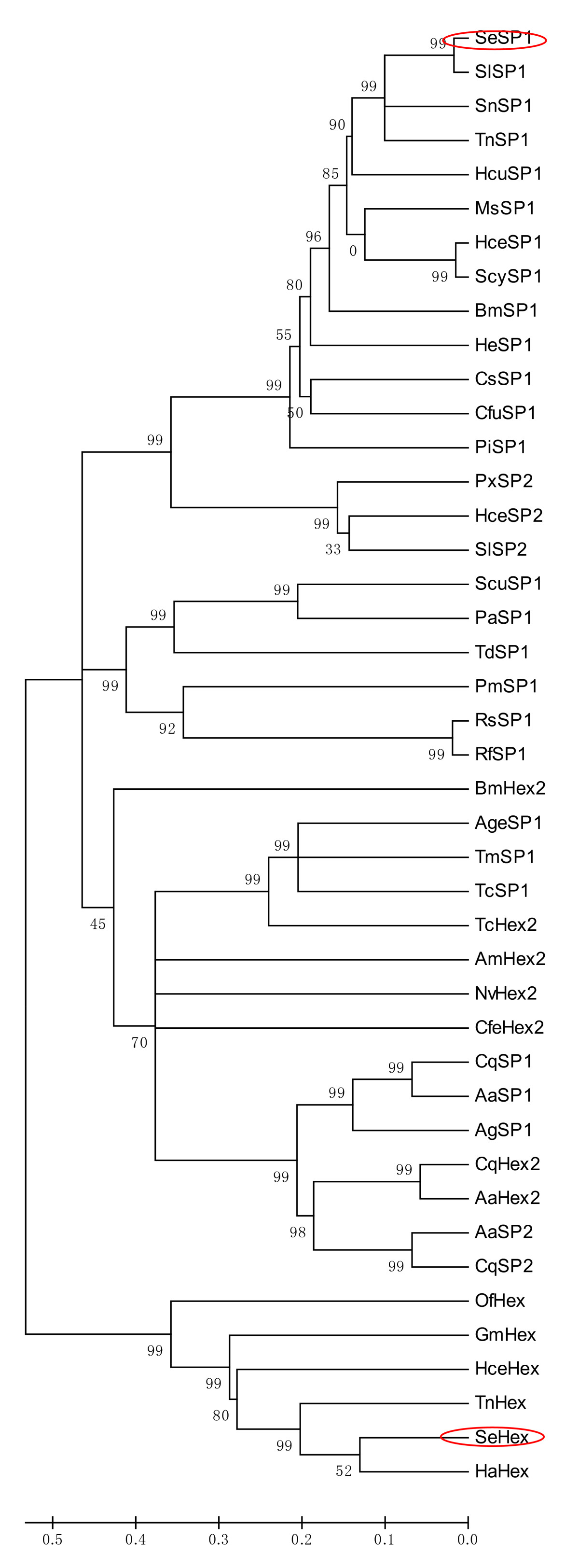 http://static-content.springer.com/image/art%3A10.1186%2F1471-2199-11-65/MediaObjects/12867_2009_Article_546_Fig2_HTML.jpg