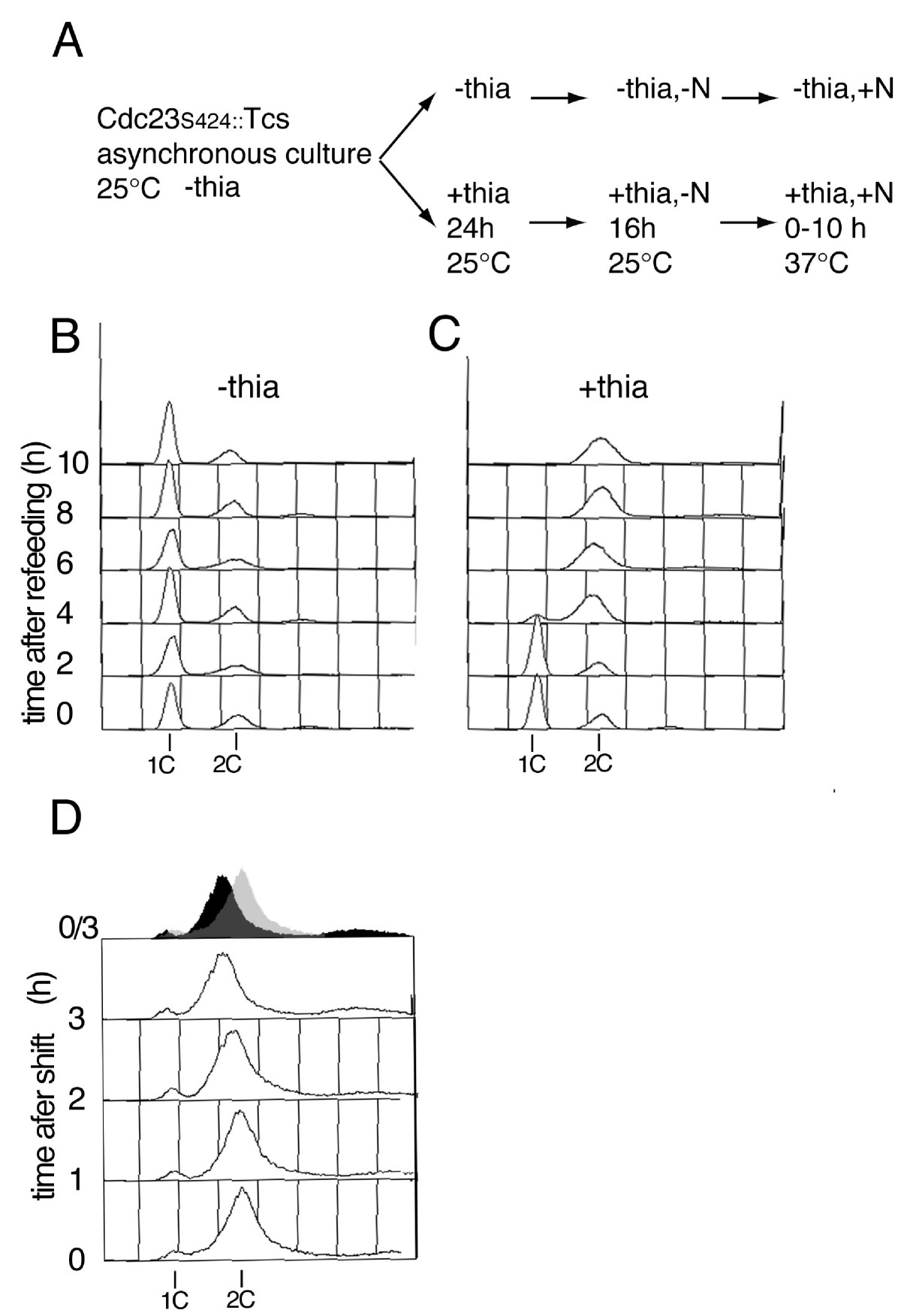 http://static-content.springer.com/image/art%3A10.1186%2F1471-2199-6-13/MediaObjects/12867_2005_Article_80_Fig3_HTML.jpg
