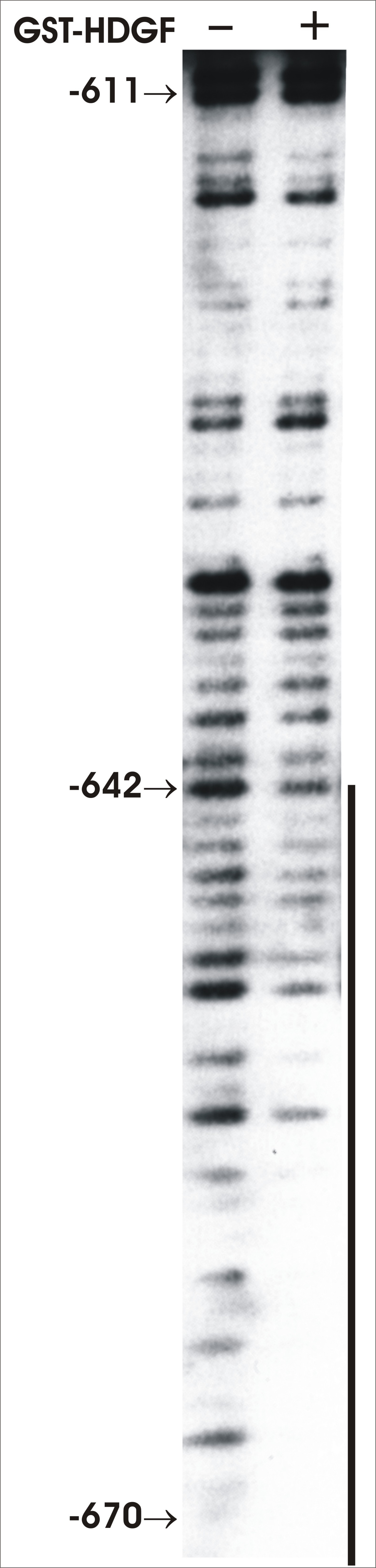 http://static-content.springer.com/image/art%3A10.1186%2F1471-2199-8-101/MediaObjects/12867_2007_Article_238_Fig4_HTML.jpg