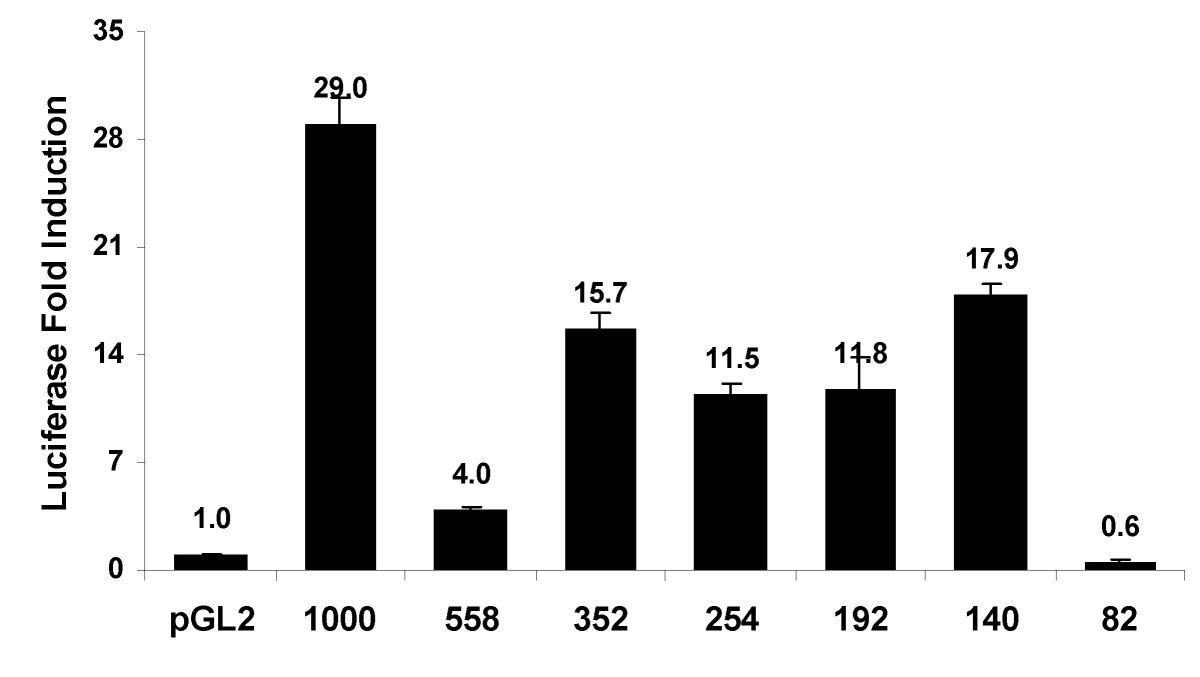 http://static-content.springer.com/image/art%3A10.1186%2F1471-2199-8-14/MediaObjects/12867_2006_Article_151_Fig2_HTML.jpg