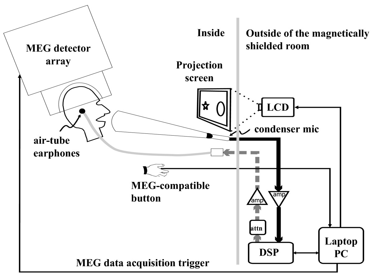 http://static-content.springer.com/image/art%3A10.1186%2F1471-2202-10-58/MediaObjects/12868_2009_Article_1062_Fig7_HTML.jpg