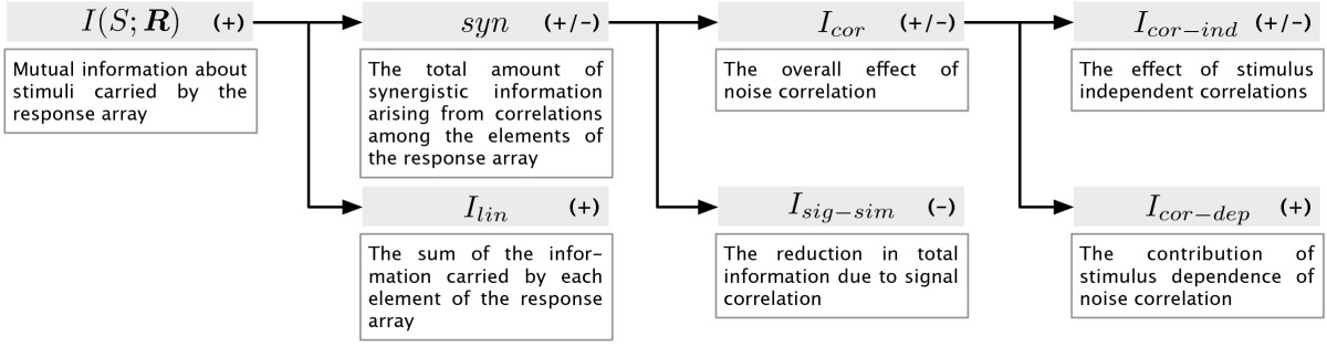 http://static-content.springer.com/image/art%3A10.1186%2F1471-2202-10-81/MediaObjects/12868_2009_Article_1085_Fig1_HTML.jpg