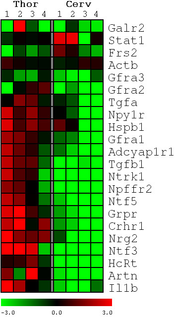 http://static-content.springer.com/image/art%3A10.1186%2F1471-2202-11-148/MediaObjects/12868_2010_Article_1925_Fig4_HTML.jpg