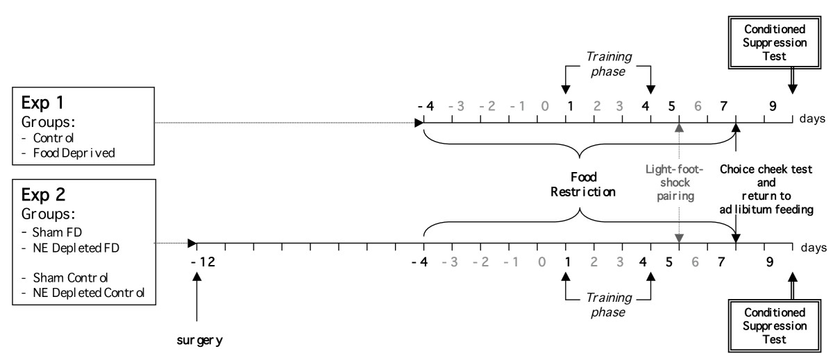 http://static-content.springer.com/image/art%3A10.1186%2F1471-2202-11-15/MediaObjects/12868_2009_Article_1574_Fig7_HTML.jpg