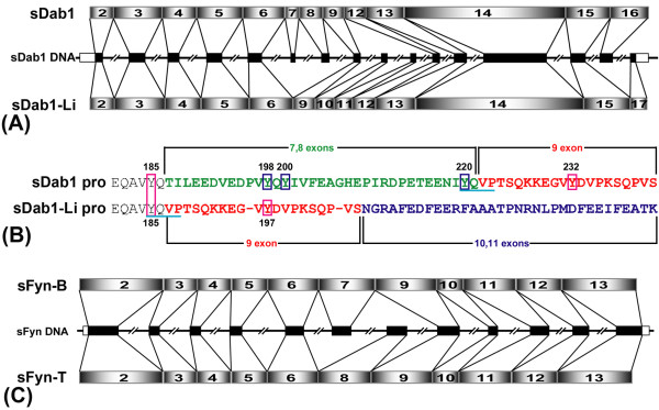 http://static-content.springer.com/image/art%3A10.1186%2F1471-2202-12-17/MediaObjects/12868_2010_1950_Fig1_HTML.jpg