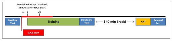 http://static-content.springer.com/image/art%3A10.1186%2F1471-2202-13-108/MediaObjects/12868_2012_2786_Fig4_HTML.jpg