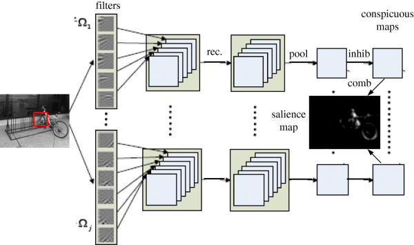 http://static-content.springer.com/image/art%3A10.1186%2F1471-2202-13-145/MediaObjects/12868_2012_2859_Fig1_HTML.jpg