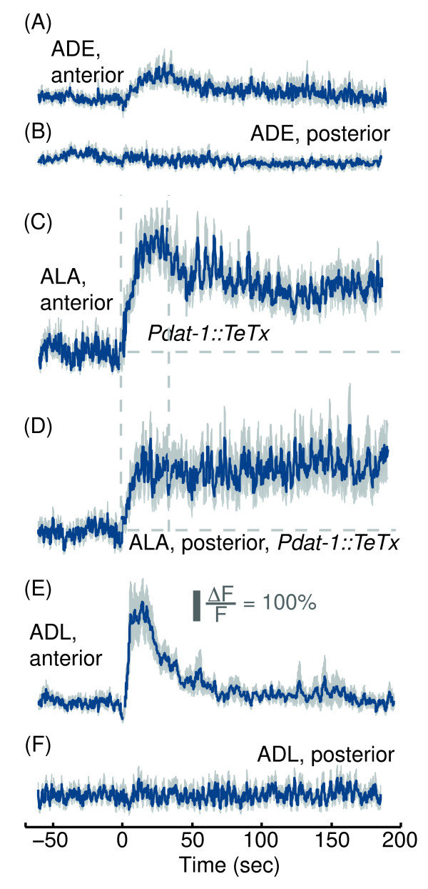 http://static-content.springer.com/image/art%3A10.1186%2F1471-2202-14-156/MediaObjects/12868_2013_3453_Fig6_HTML.jpg