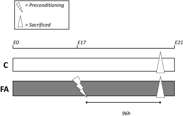 http://static-content.springer.com/image/art%3A10.1186%2F1471-2202-14-61/MediaObjects/12868_2012_2905_Fig4_HTML.jpg