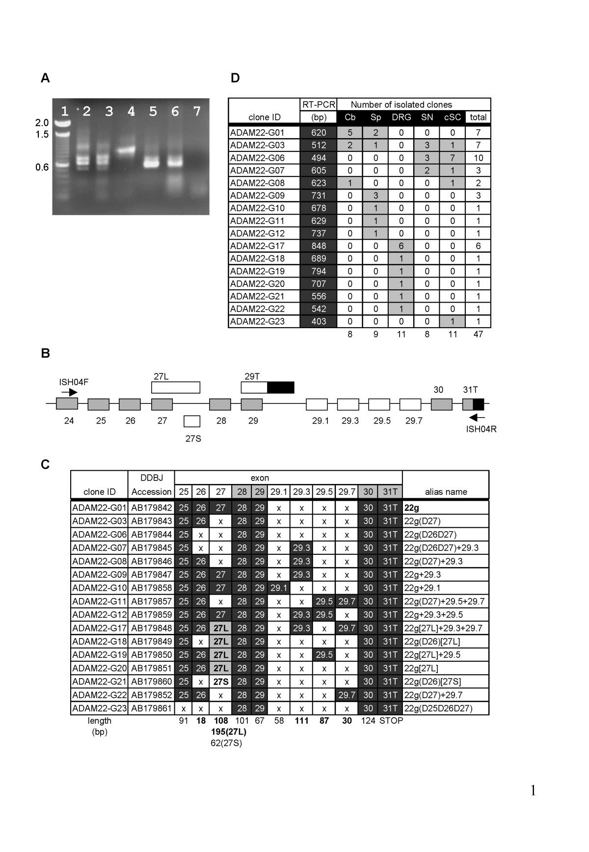 http://static-content.springer.com/image/art%3A10.1186%2F1471-2202-6-33/MediaObjects/12868_2004_Article_167_Fig8_HTML.jpg