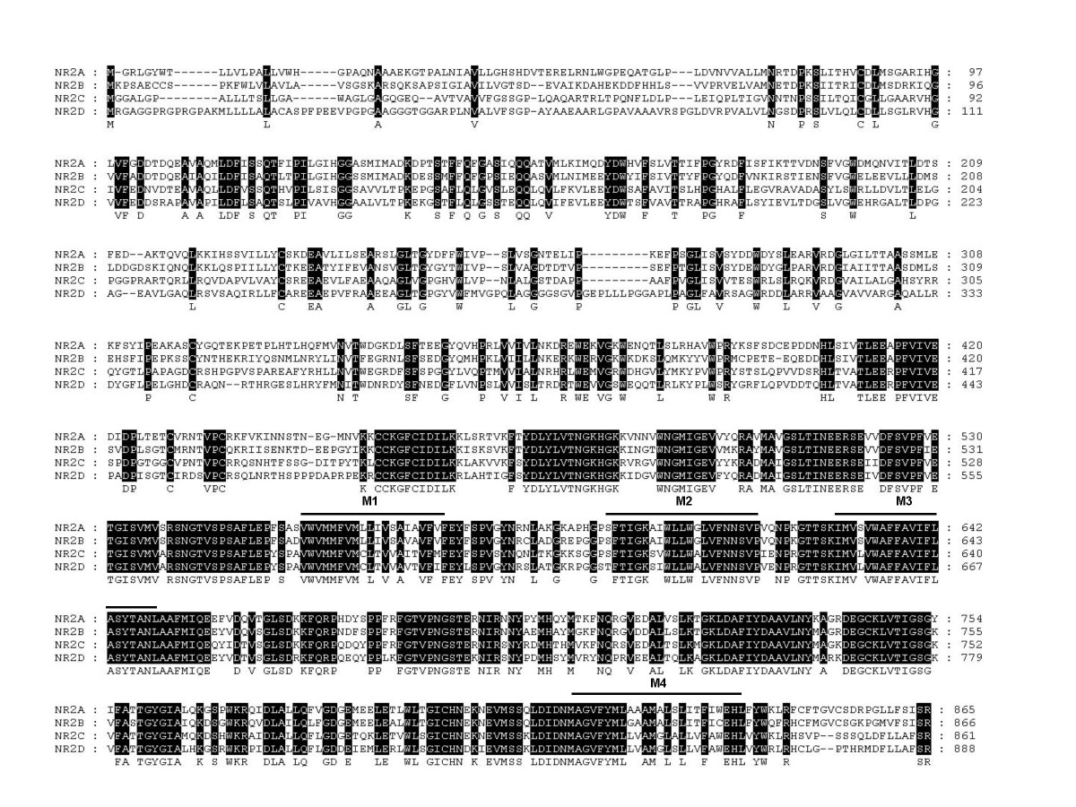 http://static-content.springer.com/image/art%3A10.1186%2F1471-2202-9-6/MediaObjects/12868_2007_Article_689_Fig2_HTML.jpg