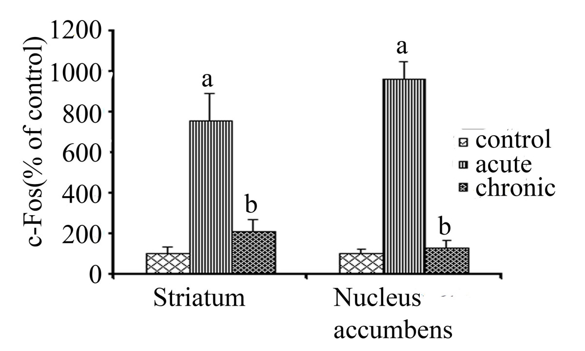 http://static-content.springer.com/image/art%3A10.1186%2F1471-2202-9-99/MediaObjects/12868_2008_Article_782_Fig2_HTML.jpg