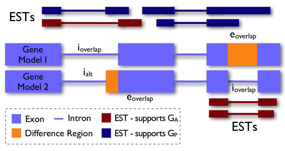 http://static-content.springer.com/image/art%3A10.1186%2F1471-2229-10-102/MediaObjects/12870_2009_Article_596_Fig1_HTML.jpg