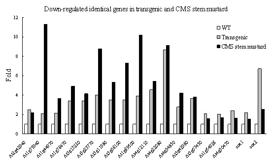http://static-content.springer.com/image/art%3A10.1186%2F1471-2229-10-231/MediaObjects/12870_2010_Article_725_Fig5_HTML.jpg