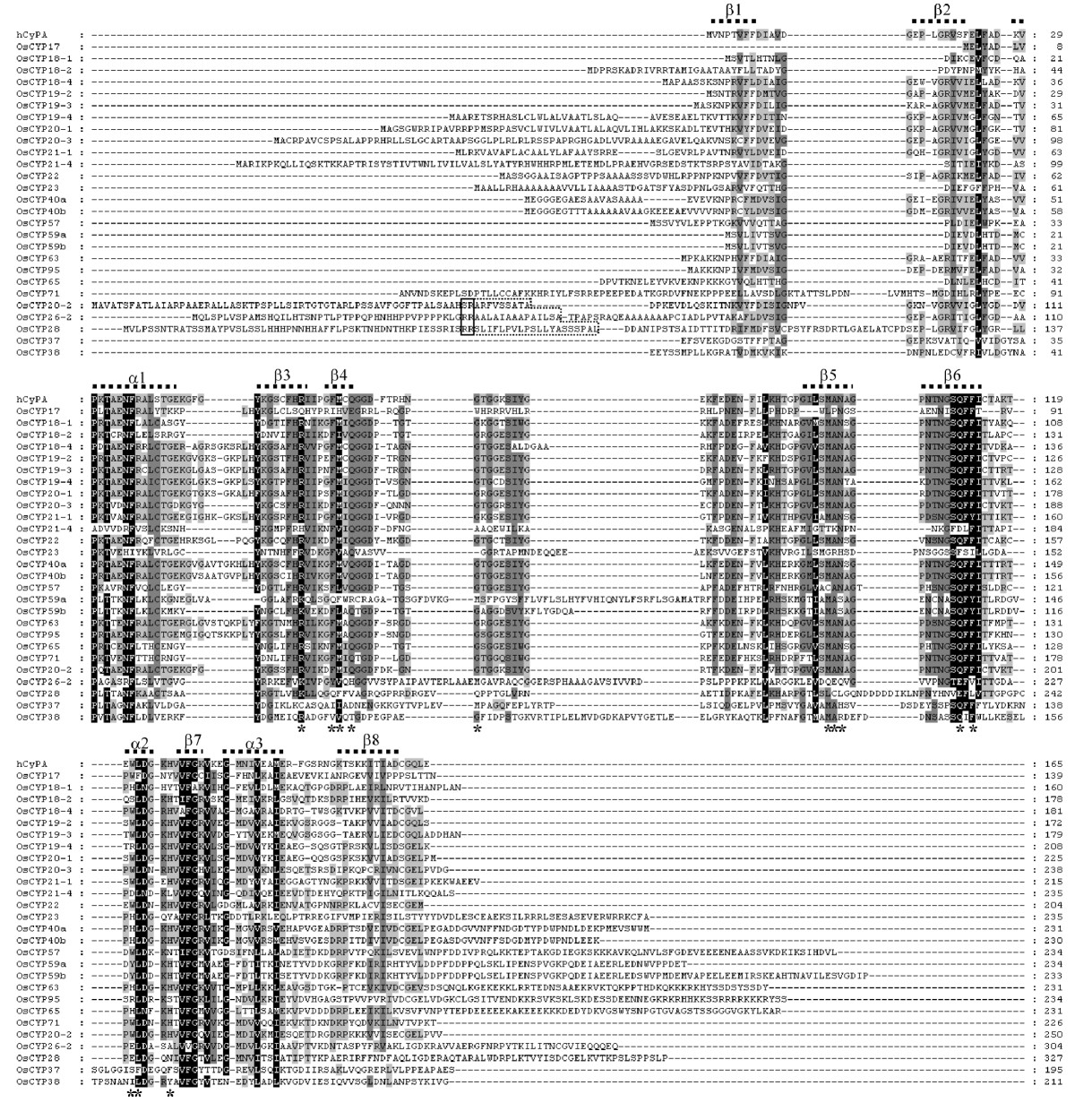 http://static-content.springer.com/image/art%3A10.1186%2F1471-2229-10-253/MediaObjects/12870_2010_Article_747_Fig4_HTML.jpg