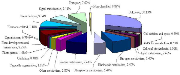 http://static-content.springer.com/image/art%3A10.1186%2F1471-2229-11-135/MediaObjects/12870_2011_924_Fig1_HTML.jpg