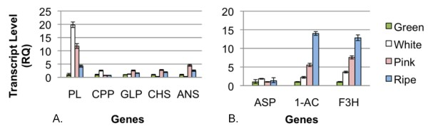 http://static-content.springer.com/image/art%3A10.1186%2F1471-2229-12-46/MediaObjects/12870_2011_1018_Fig7_HTML.jpg