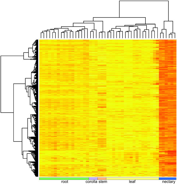 http://static-content.springer.com/image/art%3A10.1186%2F1471-2229-13-101/MediaObjects/12870_2013_1314_Fig6_HTML.jpg