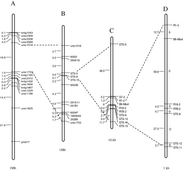 http://static-content.springer.com/image/art%3A10.1186%2F1471-2229-13-162/MediaObjects/12870_2013_1372_Fig1_HTML.jpg