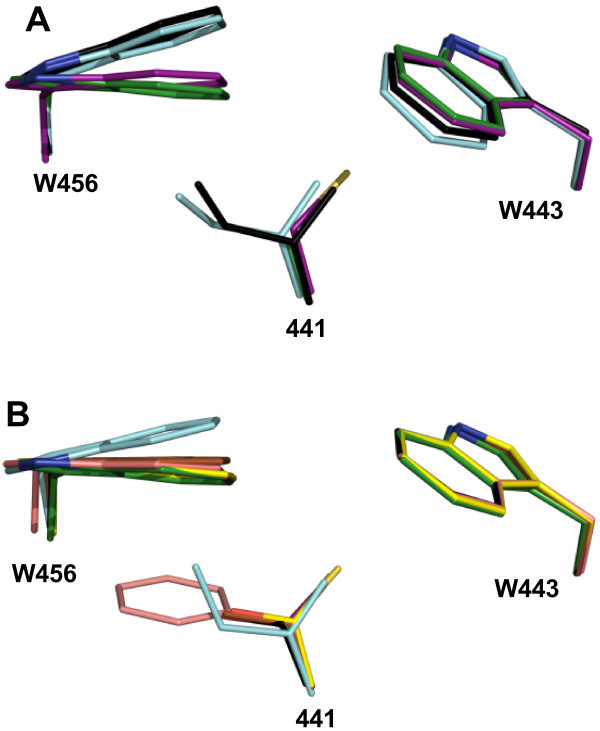 http://static-content.springer.com/image/art%3A10.1186%2F1471-2229-14-149/MediaObjects/12870_2014_1546_Fig5_HTML.jpg