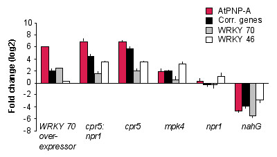 http://static-content.springer.com/image/art%3A10.1186%2F1471-2229-8-24/MediaObjects/12870_2007_Article_232_Fig4_HTML.jpg