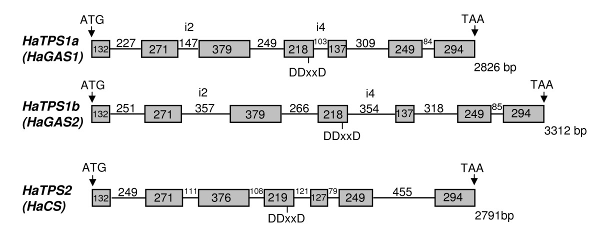 http://static-content.springer.com/image/art%3A10.1186%2F1471-2229-9-86/MediaObjects/12870_2008_Article_428_Fig1_HTML.jpg