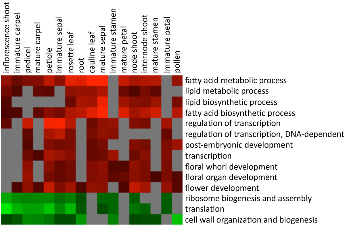 http://static-content.springer.com/image/art%3A10.1186%2F1471-2229-9-92/MediaObjects/12870_2009_Article_434_Fig5_HTML.jpg