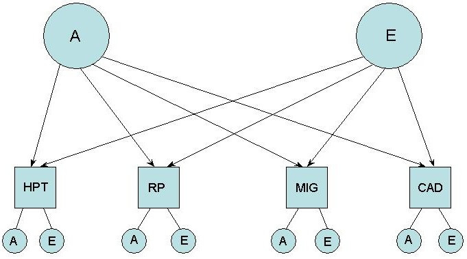 http://static-content.springer.com/image/art%3A10.1186%2F1471-2261-4-20/MediaObjects/12872_2004_Article_54_Fig2_HTML.jpg