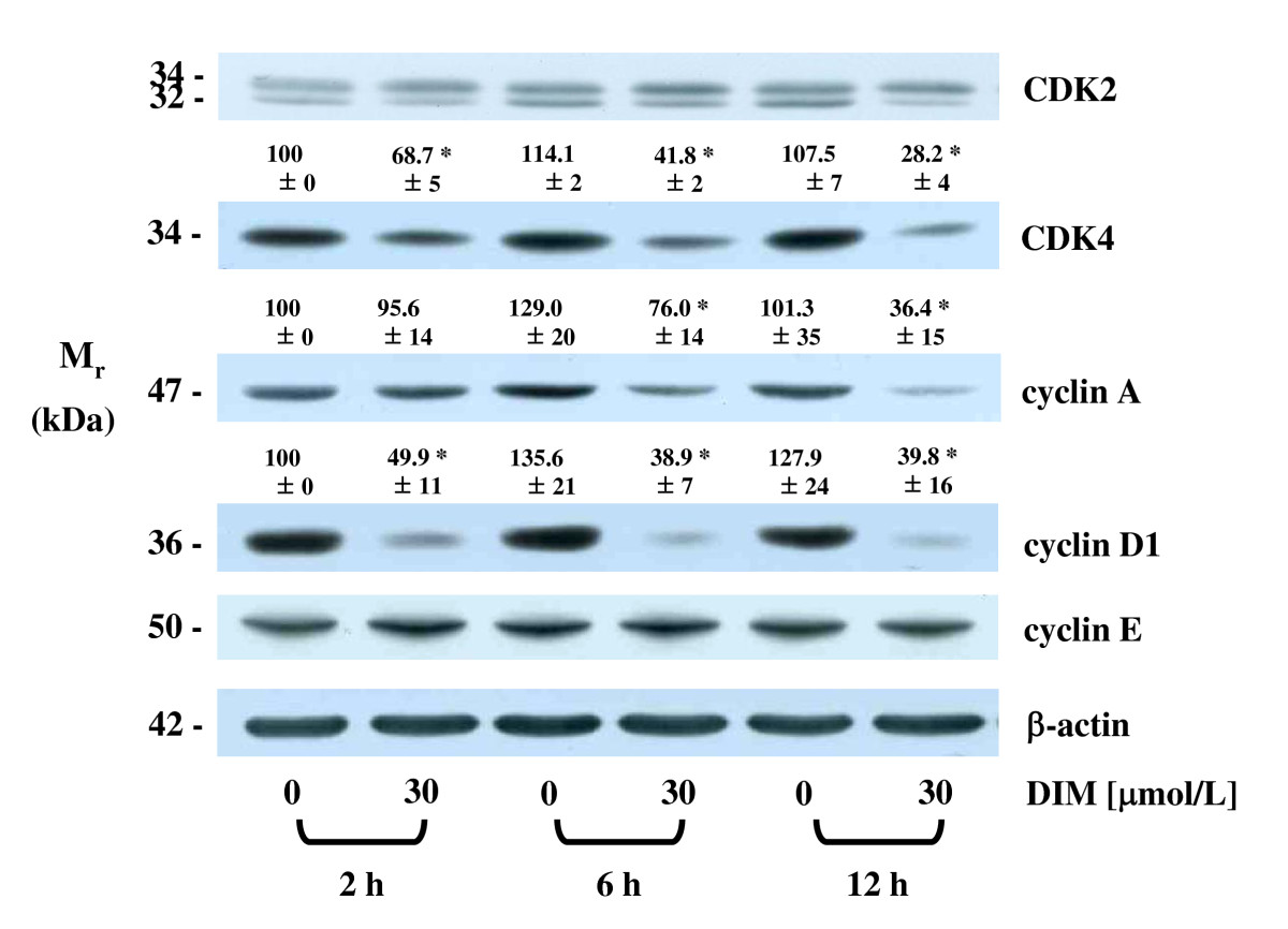 http://static-content.springer.com/image/art%3A10.1186%2F1471-230X-9-39/MediaObjects/12876_2008_Article_331_Fig2_HTML.jpg