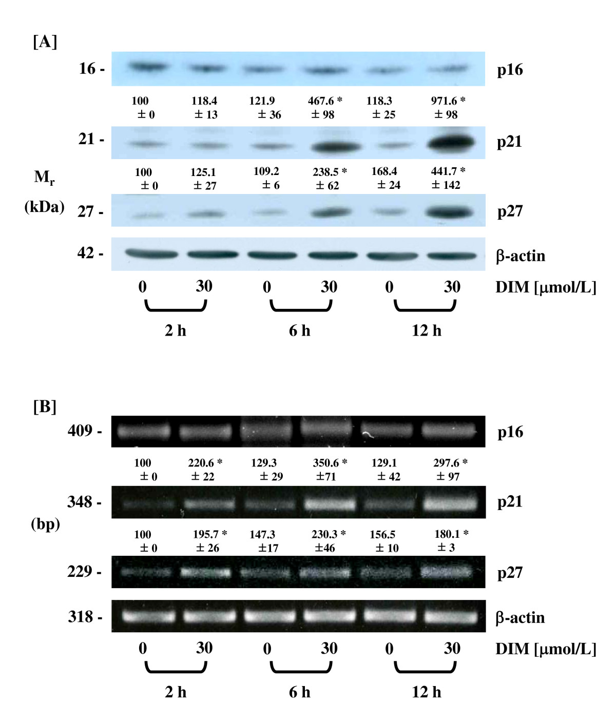 http://static-content.springer.com/image/art%3A10.1186%2F1471-230X-9-39/MediaObjects/12876_2008_Article_331_Fig3_HTML.jpg