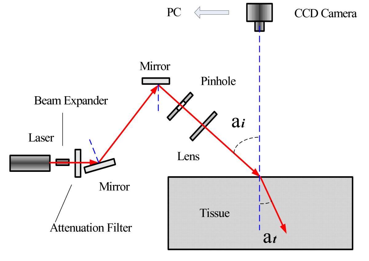 http://static-content.springer.com/image/art%3A10.1186%2F1471-230X-9-64/MediaObjects/12876_2008_Article_356_Fig1_HTML.jpg