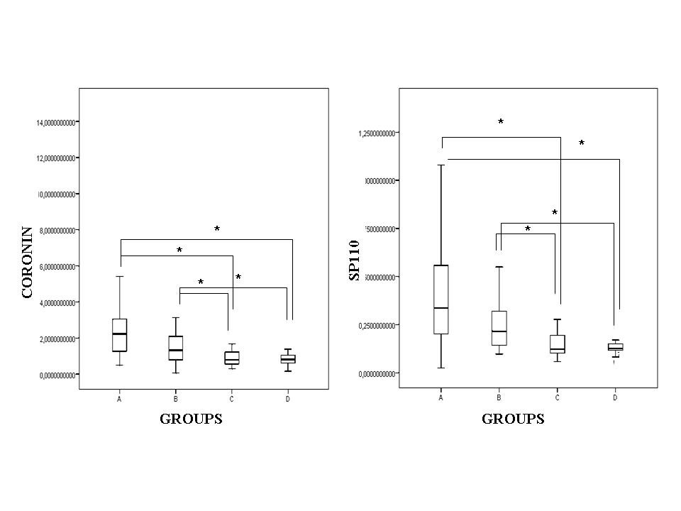 http://static-content.springer.com/image/art%3A10.1186%2F1471-2334-10-243/MediaObjects/12879_2010_Article_1223_Fig1_HTML.jpg