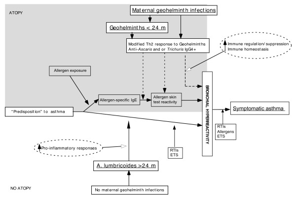 http://static-content.springer.com/image/art%3A10.1186%2F1471-2334-11-184/MediaObjects/12879_2011_1523_Fig4_HTML.jpg