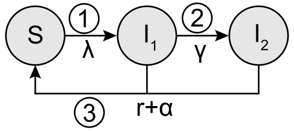 http://static-content.springer.com/image/art%3A10.1186%2F1471-2334-12-187/MediaObjects/12879_2012_2033_Fig1_HTML.jpg