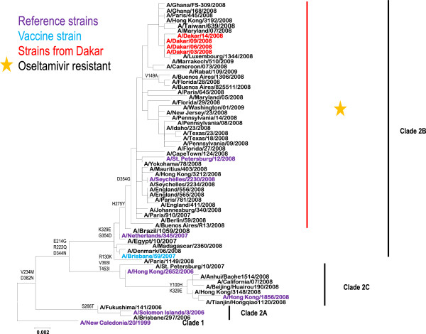 http://static-content.springer.com/image/art%3A10.1186%2F1471-2334-13-106/MediaObjects/12879_2012_2320_Fig2_HTML.jpg