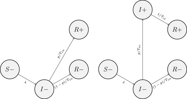 http://static-content.springer.com/image/art%3A10.1186%2F1471-2334-13-83/MediaObjects/12879_2012_2301_Fig2_HTML.jpg