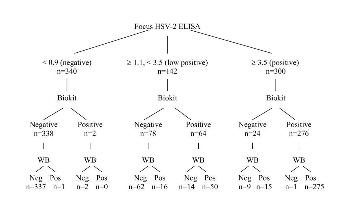 http://static-content.springer.com/image/art%3A10.1186%2F1471-2334-5-84/MediaObjects/12879_2005_Article_232_Fig2_HTML.jpg