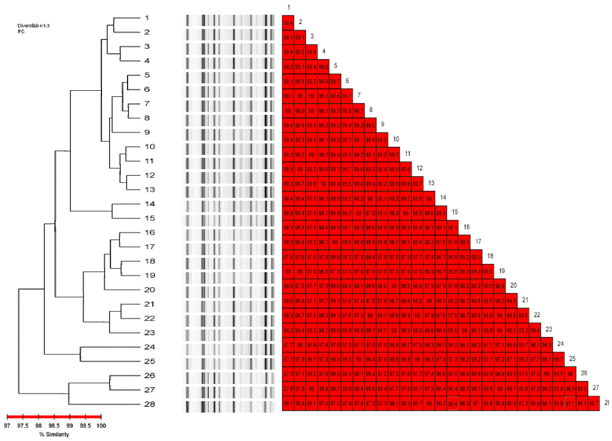 http://static-content.springer.com/image/art%3A10.1186%2F1471-2334-8-79/MediaObjects/12879_2007_Article_670_Fig3_HTML.jpg