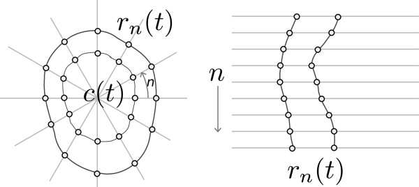 http://static-content.springer.com/image/art%3A10.1186%2F1471-2342-13-24/MediaObjects/12880_2012_187_Fig3_HTML.jpg