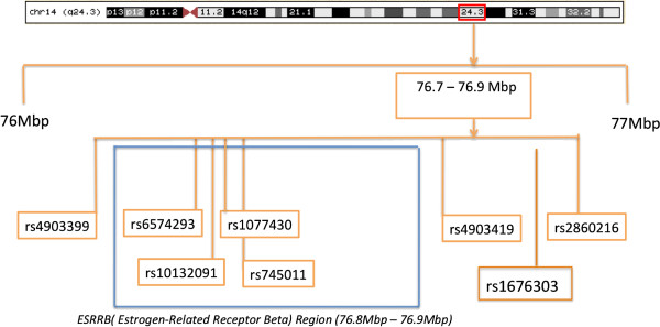 http://static-content.springer.com/image/art%3A10.1186%2F1471-2350-15-81/MediaObjects/12881_2014_1227_Fig4_HTML.jpg