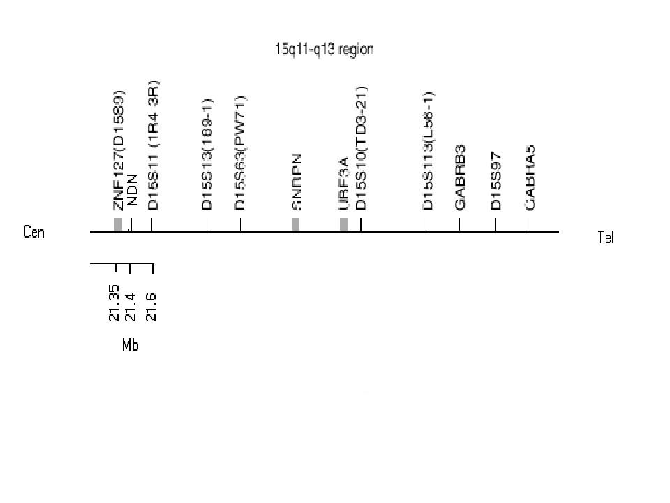 http://static-content.springer.com/image/art%3A10.1186%2F1471-2350-6-3/MediaObjects/12881_2004_Article_68_Fig4_HTML.jpg