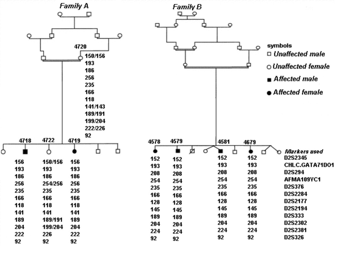 http://static-content.springer.com/image/art%3A10.1186%2F1471-2377-4-20/MediaObjects/12883_2004_Article_45_Fig2_HTML.jpg
