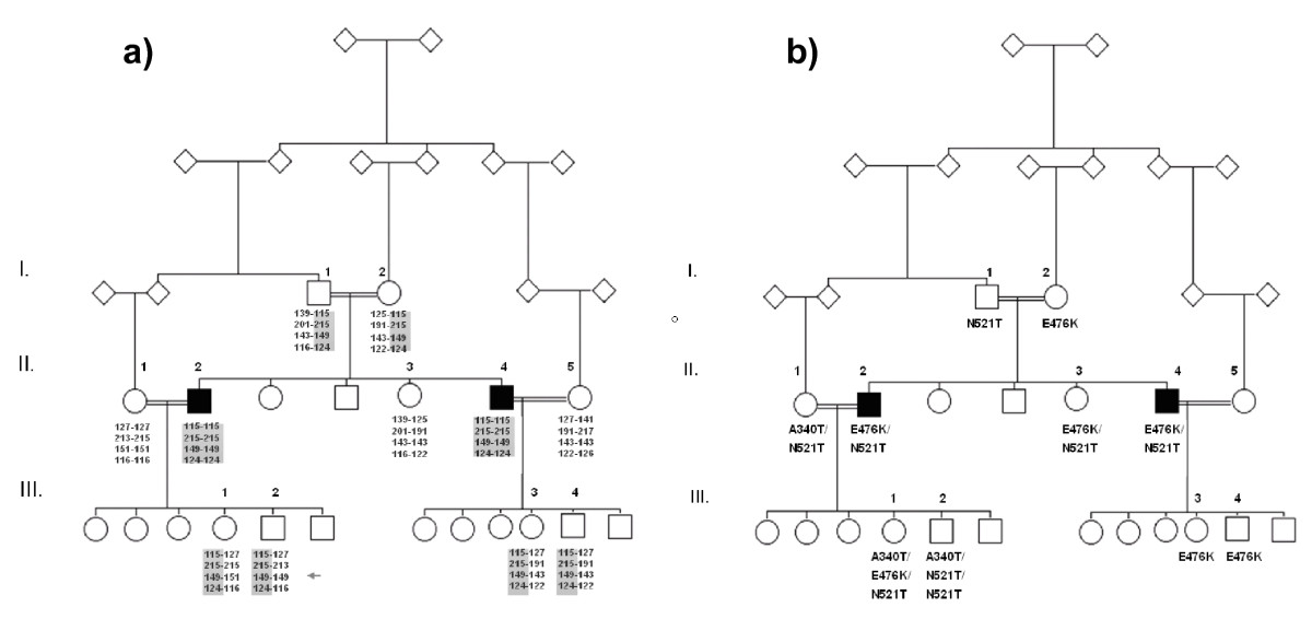 http://static-content.springer.com/image/art%3A10.1186%2F1471-2377-8-47/MediaObjects/12883_2008_Article_209_Fig3_HTML.jpg