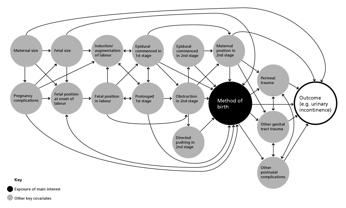 http://static-content.springer.com/image/art%3A10.1186%2F1471-2393-6-12/MediaObjects/12884_2005_Article_79_Fig2_HTML.jpg