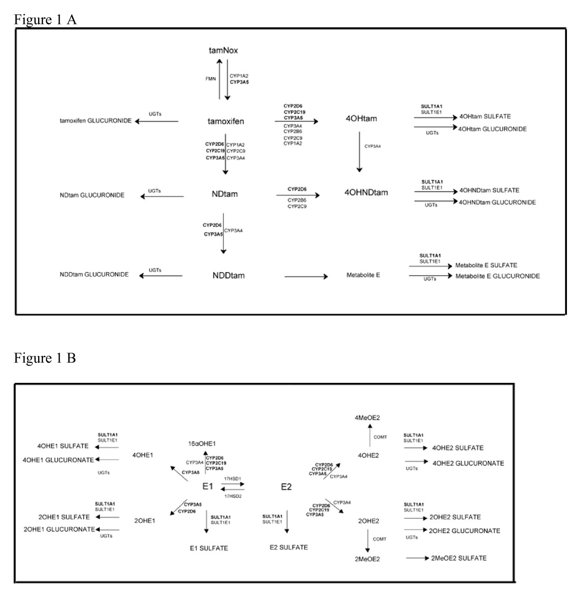 http://static-content.springer.com/image/art%3A10.1186%2F1471-2407-10-313/MediaObjects/12885_2010_Article_2112_Fig1_HTML.jpg