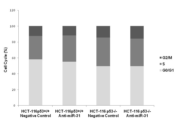 http://static-content.springer.com/image/art%3A10.1186%2F1471-2407-10-616/MediaObjects/12885_2010_Article_2415_Fig5_HTML.jpg
