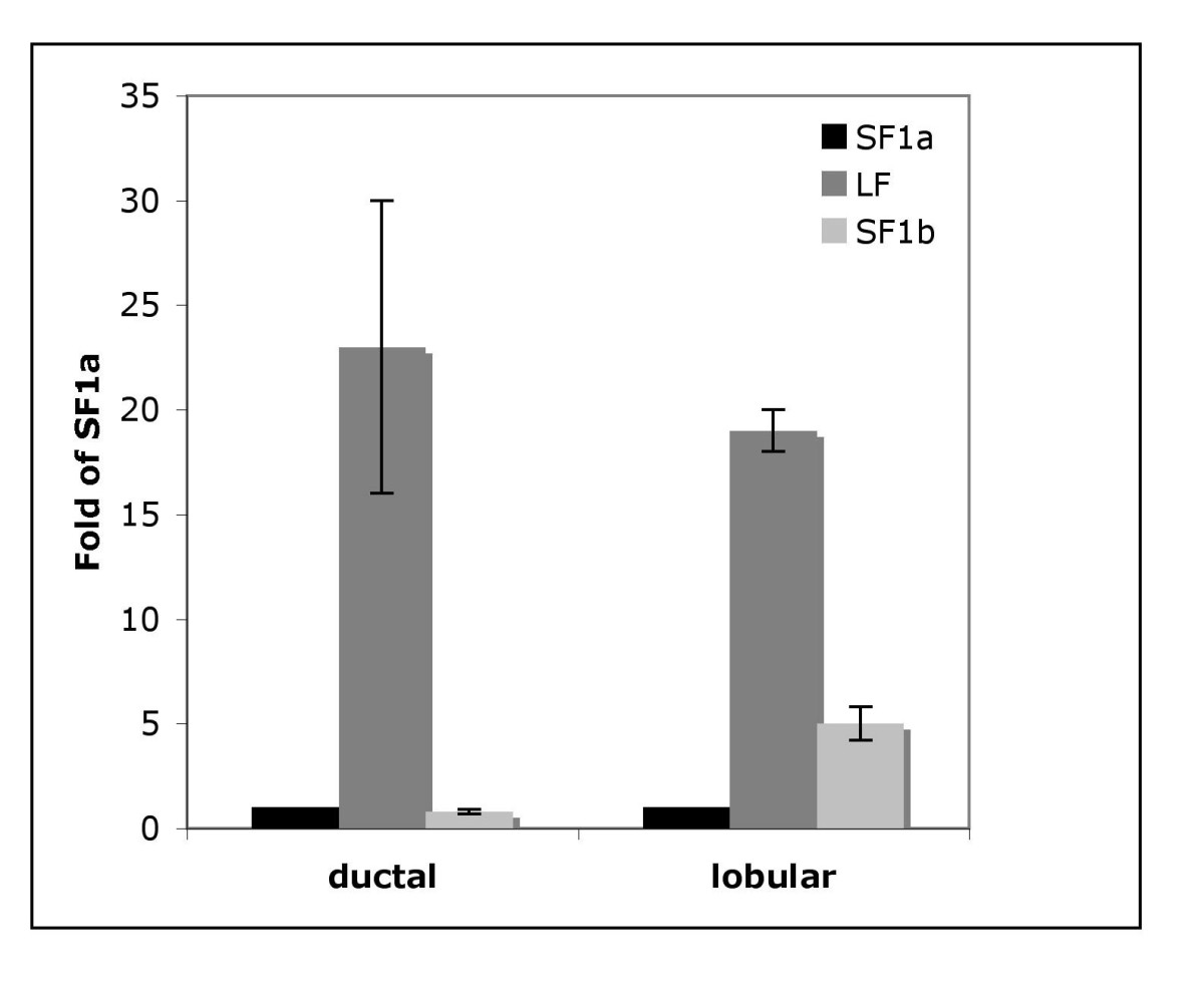 http://static-content.springer.com/image/art%3A10.1186%2F1471-2407-10-678/MediaObjects/12885_2010_Article_2477_Fig4_HTML.jpg