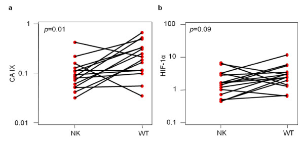 http://static-content.springer.com/image/art%3A10.1186%2F1471-2407-11-390/MediaObjects/12885_2011_2875_Fig5_HTML.jpg