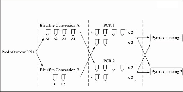 http://static-content.springer.com/image/art%3A10.1186%2F1471-2407-12-12/MediaObjects/12885_2011_3038_Fig1_HTML.jpg