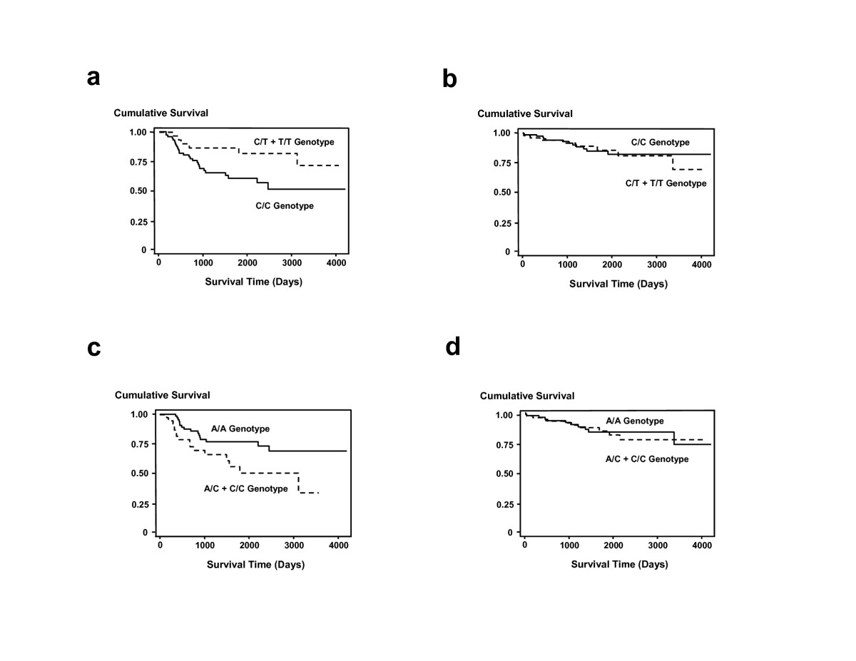 http://static-content.springer.com/image/art%3A10.1186%2F1471-2407-6-257/MediaObjects/12885_2006_Article_609_Fig1_HTML.jpg